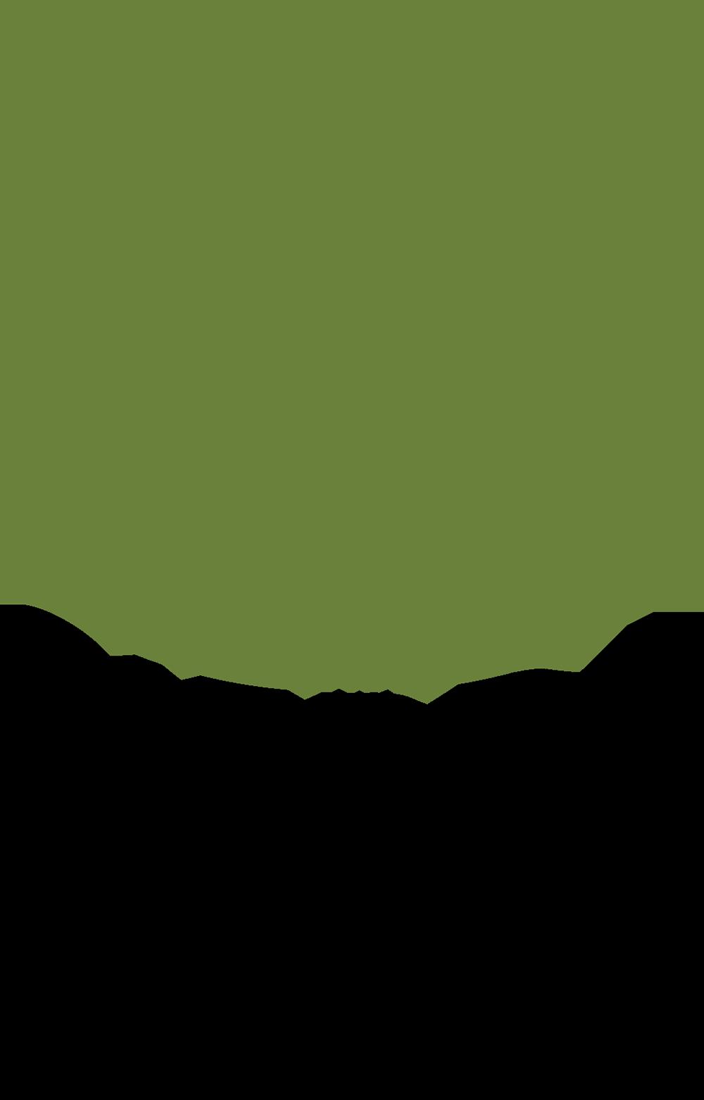 SC Logo_Vert Web Green